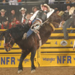 PRCA photo by Dan Hubbell